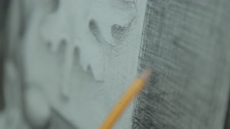 grafit : The artist strokes with a simple pencil. Pencil drawing. Stok Video