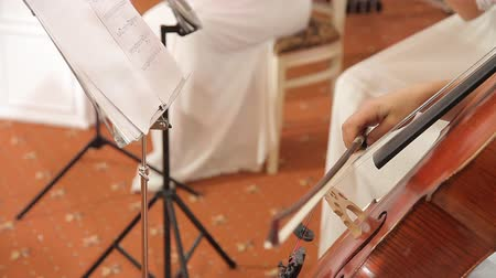 симфония : A girl in a white dress plays the cello. A female hand holds a bow and plays the strings