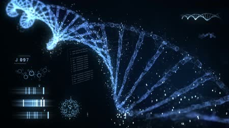 concept : Digital DNA