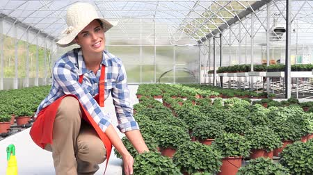 treatmen : smiling woman in greenhouse with plants Stock Footage