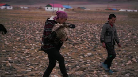 goatherd : Deluun, Mongolia - November 9, 2015: Life in the harsh Mongolian territory, large areas with poor vegetation for agriculture. Mother and son go through desert Mongolian hills. Documentary footage