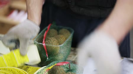 exportação : Worker packs containers with kiwi in net bags. Grocery suppliers and retailers. Trader of retail and wholesale trade