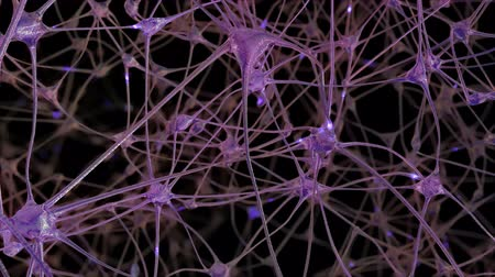 nerves : Journey through a network of neuronal cells and synapses in the brain through which the electrical impulses and discharges pass