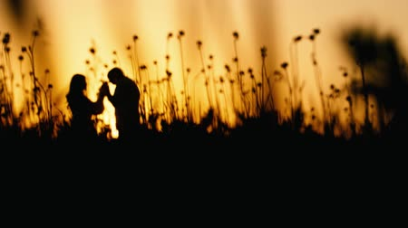 apaixonado : Couple in love at sunset