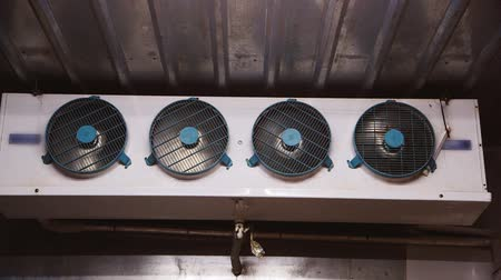 frig : Several fans inside the freezer Stock Footage
