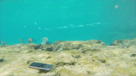 wallow : Mobile phone sinks, sinks to the bottom. Concept - freedom from technology, a good vacation