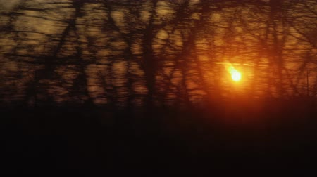 окно : The rising sun from the window of a moving train or car