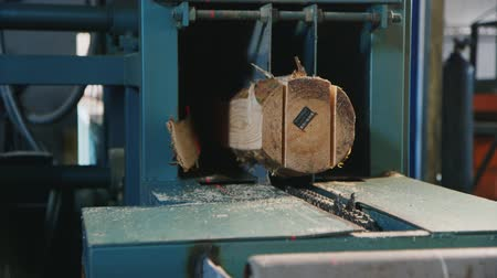 sawn : The log is sawn into boards at a sawmill