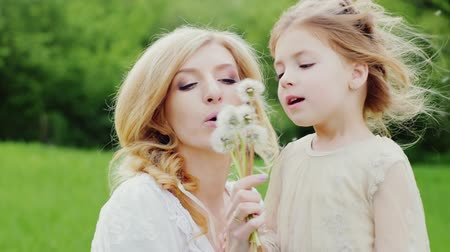 dech : Mum with a daughter 4 years - Blow away dandelion seeds, laughing. In the background a picturesque green lawn