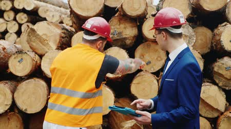 site : Working with engineer inspect the warehouse. To measure the diameter of the logs, write data into a tablet
