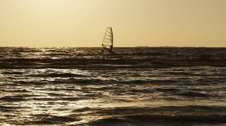 prancha de surfe : Board with a sail floating on the sea in the evening at sunset