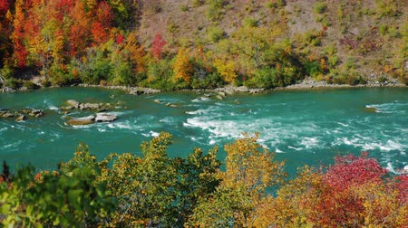 separação : The picturesque Niagara River flows along the rocky coast, covered with autumn forest. It separates the United States and Canada, a view from the United States. The popular tourist route Stock Footage
