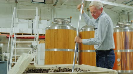 bordo : Sequence 2 video: Winemaker working in the winery. Stirred raw materials for wine. Punch down the cap Stok Video