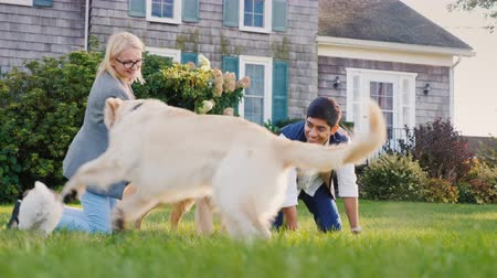 resto : Multiethnic couple playing with dogs in their backyard