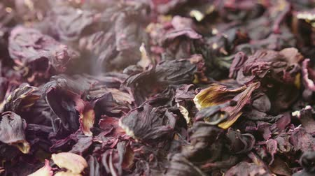 hibiscus tea : Leaves of tea carcade. Video with beautiful lens flare. Traditional Egyptian drink Stock Footage