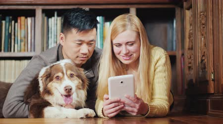 zwierzeta : A multiethnic couple uses a tablet in the library. They lie side by side on the floor on the background of shelves with books, next to them their dog. Wideo