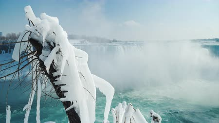 сосулька : A tree covered with icicles and hoarfrost, in the background Niagara Falls. The early arrival of spring