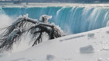 сосулька : Winter season at Niagara Falls. The earth is covered with snow, the tree is covered with icicles and hoarfrost