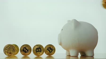 piggy bank : The hand inserts Bitcoins coin into the coin box. On a white background. The accumulation of the crypto currency concept Stock Footage