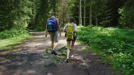 erdészet : Rear view:Friends with backpacks on their backs follow a path in the forest. Active young people in the hike
