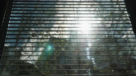 rolety : View from the window of a block of flats. The sun shines through the blinds, other houses and trees are seen