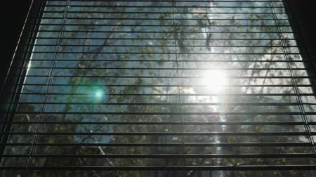 rolety : Opening of horizontal blinds on the window. Through them the sun shines Wideo