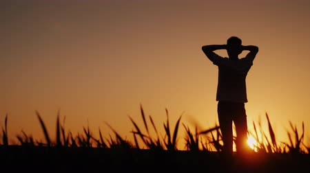 from behind : Silhouette A young man enjoys the fresh air and admires the sunset. He holds his hands behind the back of his head, looks ahead in front of him Stock Footage