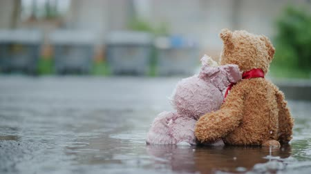 peluş : Two friends - a hare and a bear cub are sitting on the asphalt in the rain. Look at the trash cans in front, hug. Lost Toys
