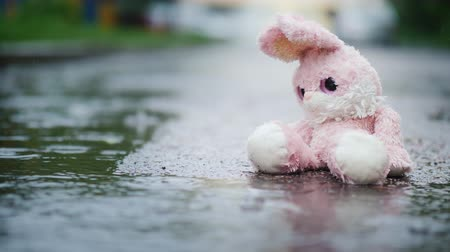 nyuszi : A wet toy hare becomes wet under the rain. Sits alone on the cold asphalt Stock mozgókép