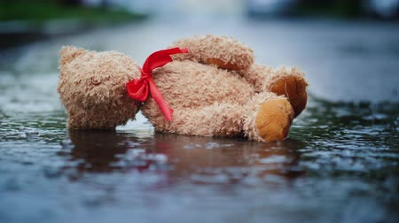csavargó : The abandoned little bear lies on a wet road, its raining. Loss and Depression concept Stock mozgókép