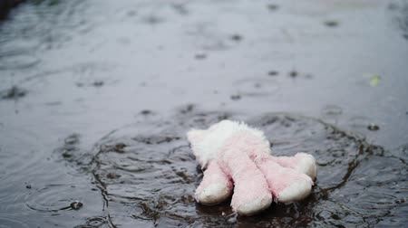 csavargó : The plush pink hare falls into a puddle. Its raining heavily. Slow motion video