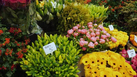 vetrina : A great coloring on the famous flower market in Amsterdam. Showcase with bouquets and prices