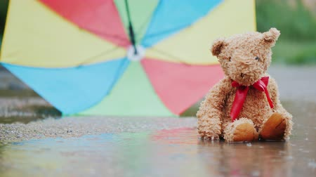 başıboş : A wet teddy bear is sitting in a puddle under an umbrella. The wind blows the umbrella Stok Video