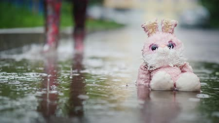 csavargó : A damp, plush bunny is sitting in a puddle in the rain. Passer passes by. Indifference and coldness concept