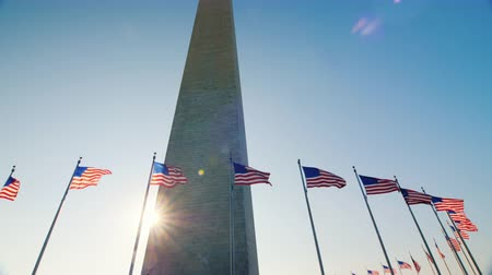president of united states : Sunlight shines because of the Washington Monument, DC. Tilt shot Stock Footage