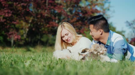 companionship : A young couple chooses a puppy. Buying a dog concept Stock Footage