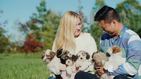 companionship : Have fun with the puppies. Young couple holding many puppies in their hands