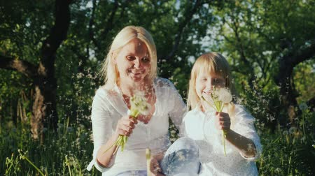 dmuchawiec : Happy together - a woman with a daughter playing with a bunch of dandelions, having fun. Slow motion video