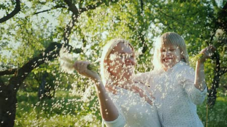 dmuchawiec : Mom and daughter have fun together. Playing with a bouquet of dandelions - blowing seeds