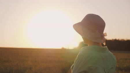 földműves : A female farmer in a hat looks at the horizon above a field of wheat. Enjoying the sunset, the back view Stock mozgókép