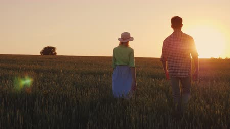 gaiola : Two young farmer man and woman are walking along the wheat field at sunset. Organic farmer concept Stock Footage