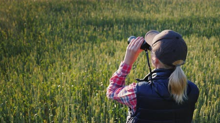harcerz : A woman looks through binoculars. Standing in the endless green field. Rear view