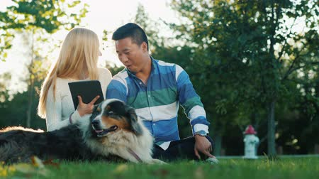 köpekler : Friends of students rest in the park with a dog. Use a digital tablet Stok Video