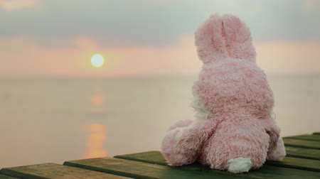 долл : Pink toy hare sitting on the pier, looking at the rising sun
