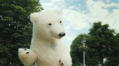 tlapky : A close-up of a polar bear, a cool growth doll waving her hand to the camera Dostupné videozáznamy