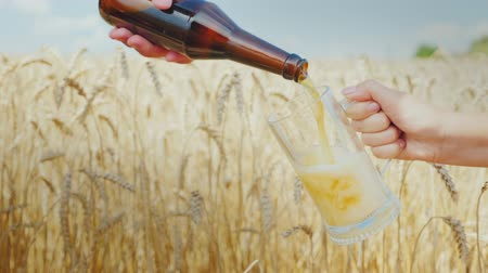 bira fabrikası : Pour fresh beer in a mug against the background of ripe wheat