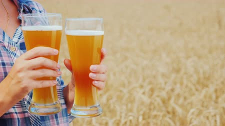 bira fabrikası : A woman holds two glasses of cool seductive beer against the background of a field of yellow wheat Stok Video