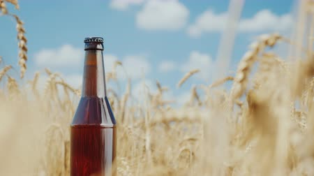 beckoning : One bottle of cool beer on a background of wheat field and blue sky. Natural product concept Stock Footage