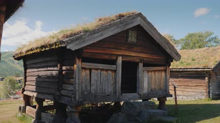 антиквариат : Ancient Norwegian house with moss on the roof