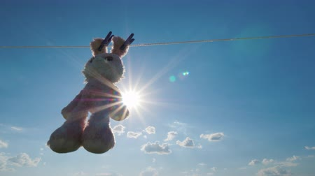peluş : Plush rabbit hanging on a rope, dried in the sun